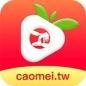 草莓app下载安装色板无限观看版