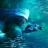 饥饿鲨鱼求生(无限升级) V1.0.0 安卓版